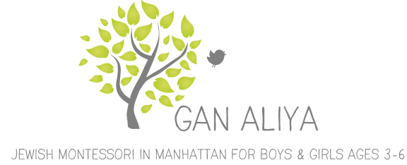 Gan Aliya Jewish Montessori in Manhattan